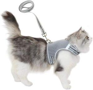 Pangdi Escape Proof Cat Harness