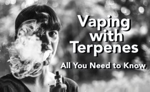 Vaping with Terpenes-all you need to know - post image