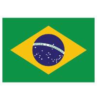 Best money transfer service to Brazil
