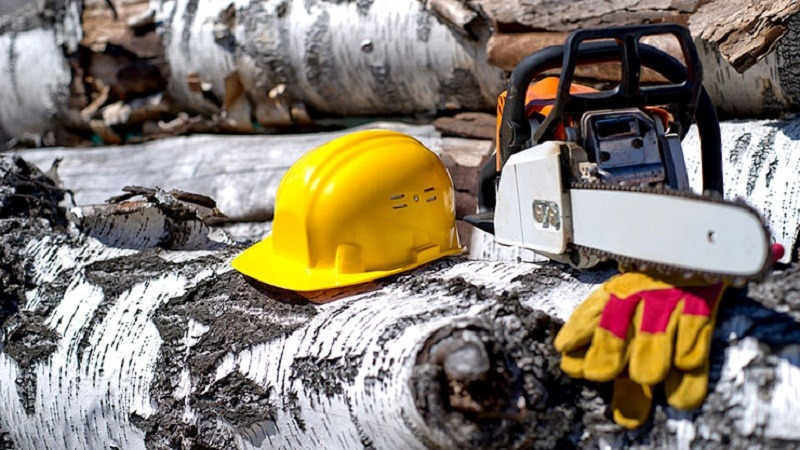 TOP 5 CHAINSAW SAFETY TIPS