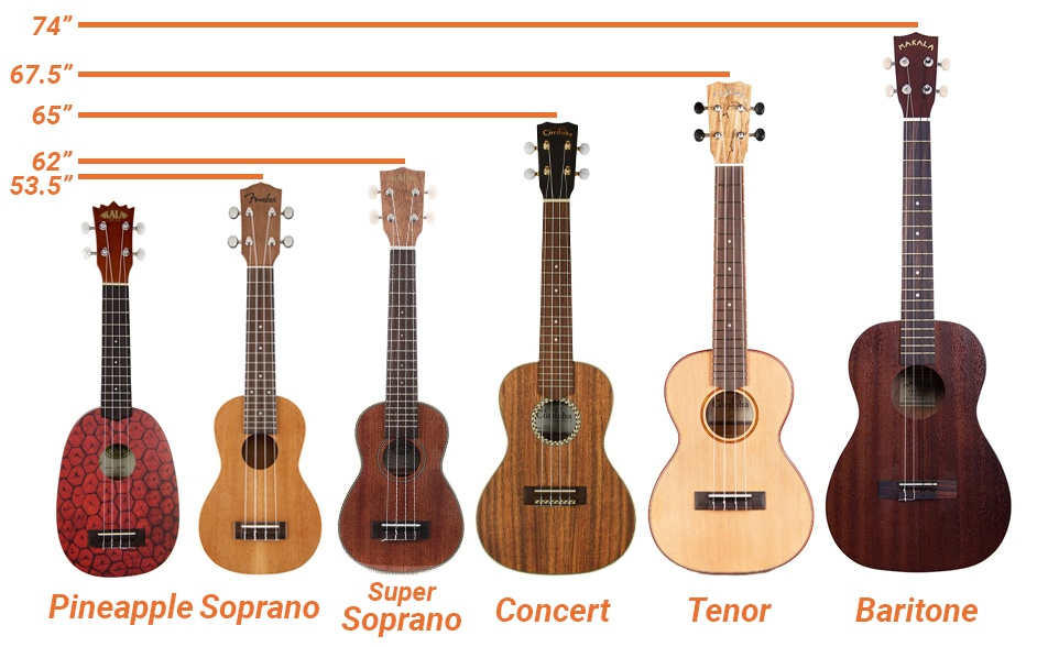 Sizes Measurements And Guitar
