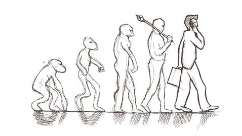 Evolution in business