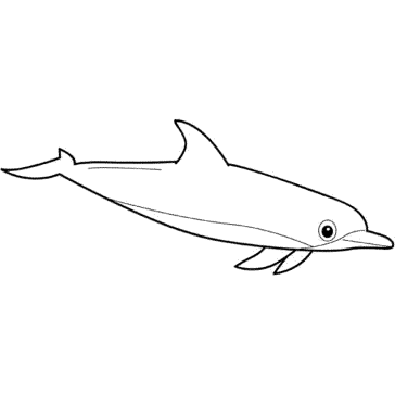 dolphin-coloring-pages-printable