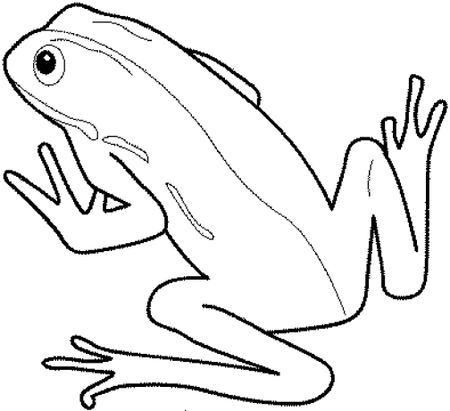 printable-frog-coloring-pages