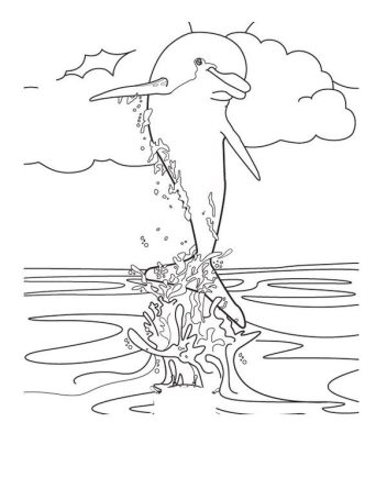 spinner-dolphin-coloring-page