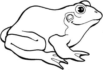 tree-frog-coloring-pages-printable