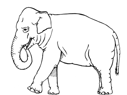 coloring-pages-elephant