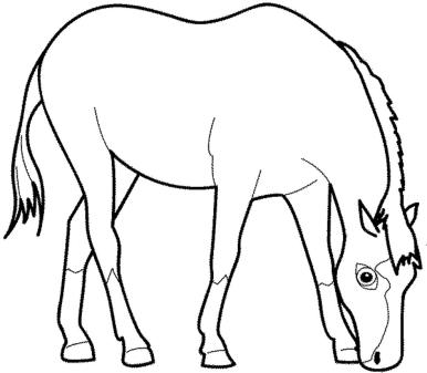 coloring-pages-of-horses