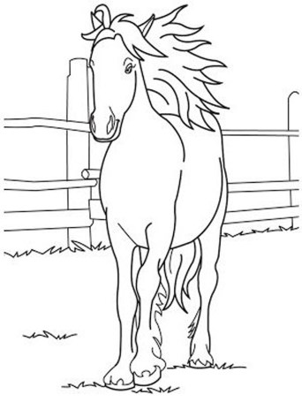 cute-horse-coloring-pages