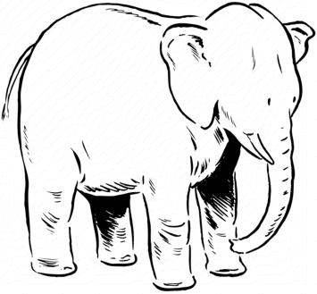 elephants-coloring-pages