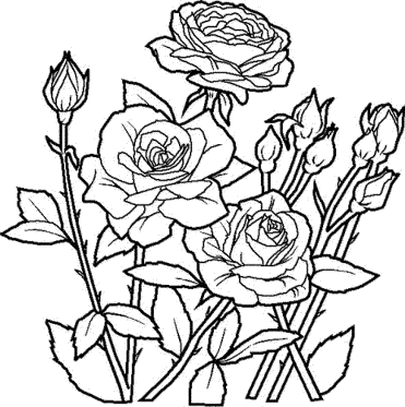 flower-mandala-coloring-pages