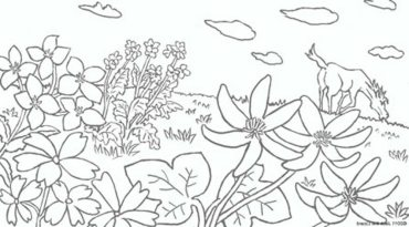 flowers-coloring-pages