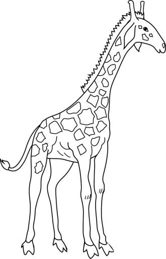 giraffe-color-page