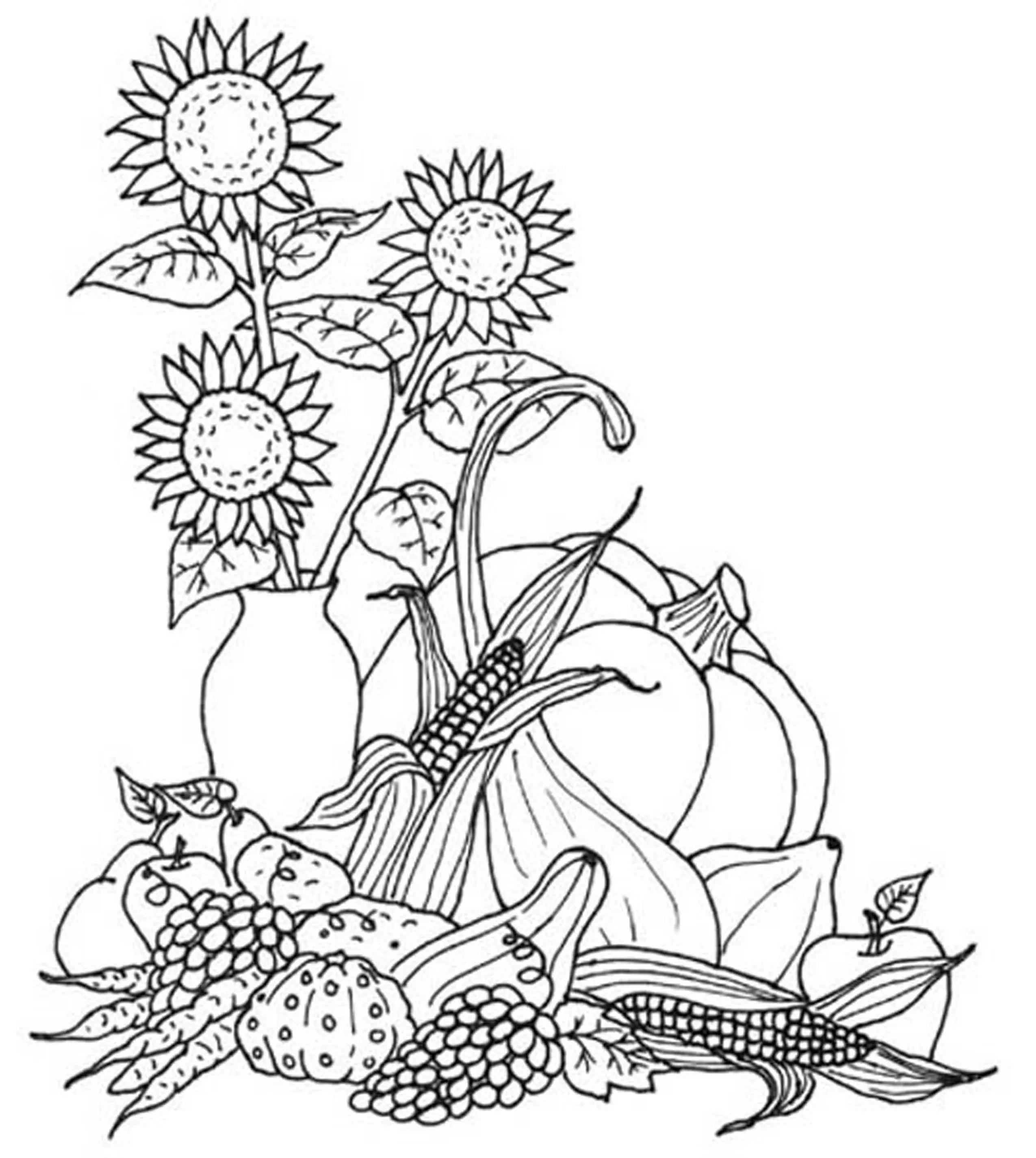 Print amp Download Fall Coloring