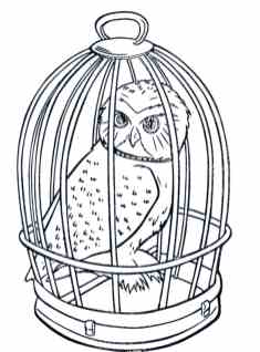 realistic-owl-cage-coloring-pages