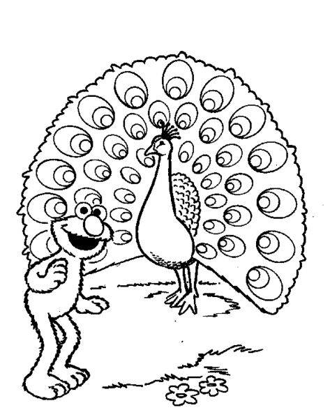 sesame-street-elmo-coloring-pages