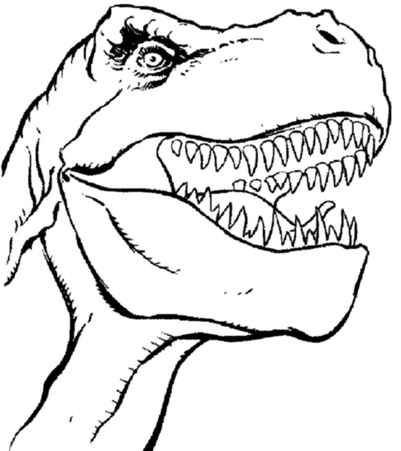 T Rex Head Coloring Page