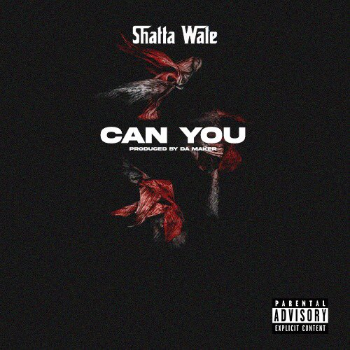 Shatta Wale - Can You Mp3 Download
