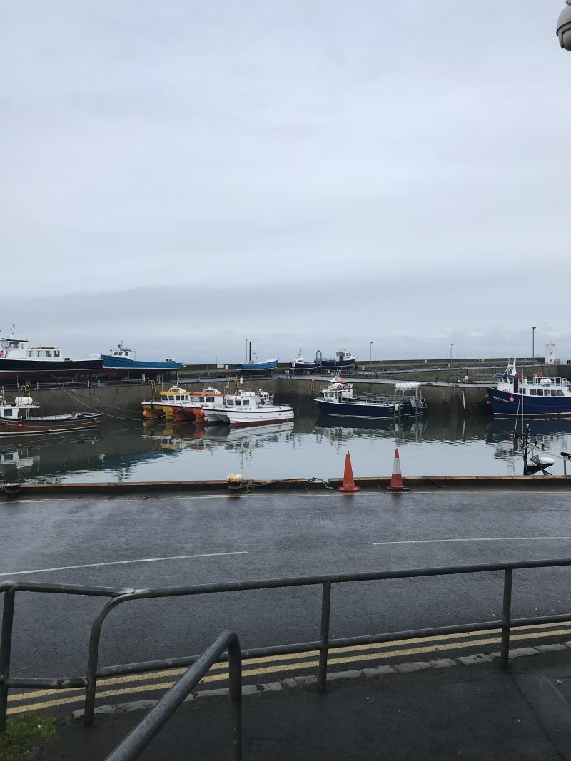 the-harbour-at-seahouses
