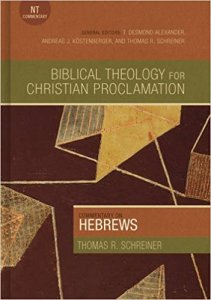 hebrews commentary cover