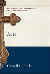 Acts commentary by Darrell Bock