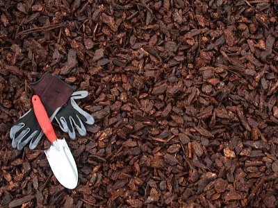 Image result for pictures of mulch types