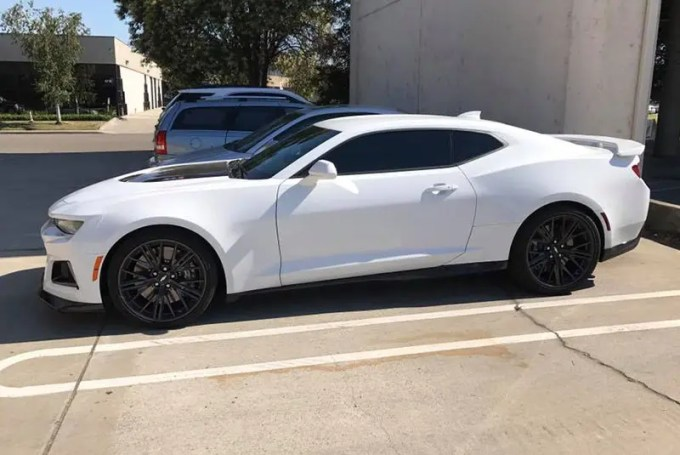 Tint Protection