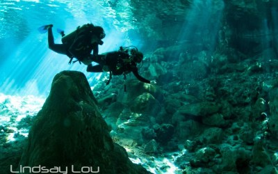 5 Best Cenotes to Dive in Tulum