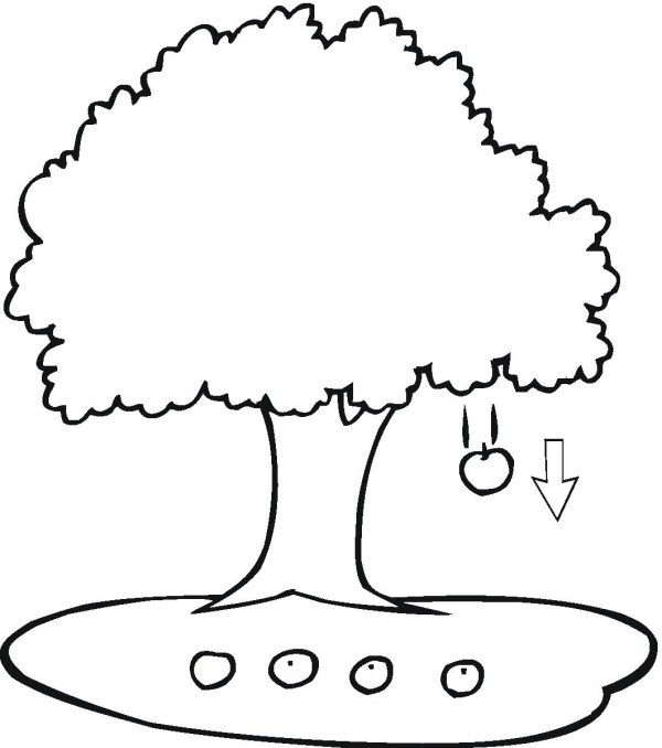 apple tree coloring pages # 10