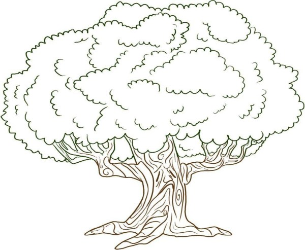 trees coloring pages # 12