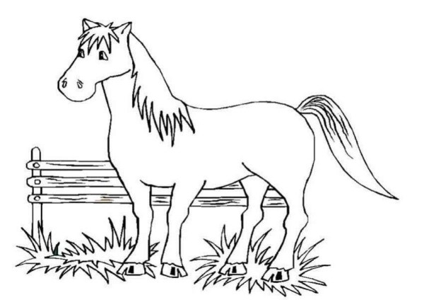 free printable horse coloring pages # 10