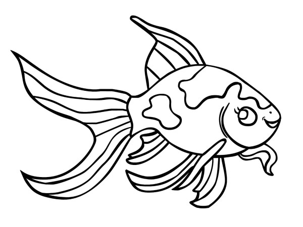 goldfish coloring page # 4