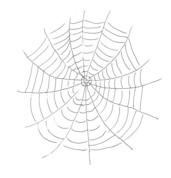 spider web coloring page # 7
