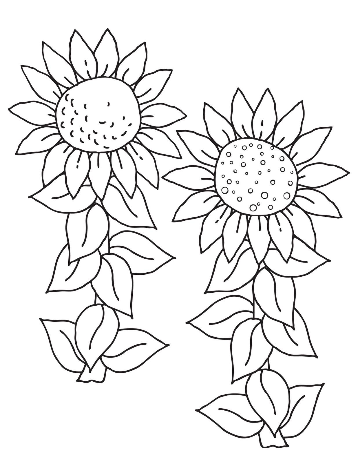 Worksheet Flower Pattern Color