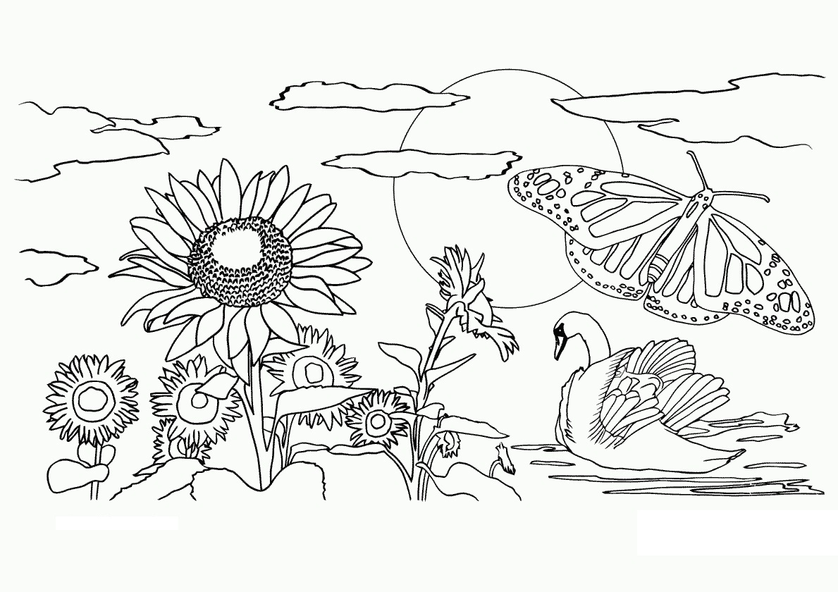 Free Printable Nature Coloring Pages For Kids