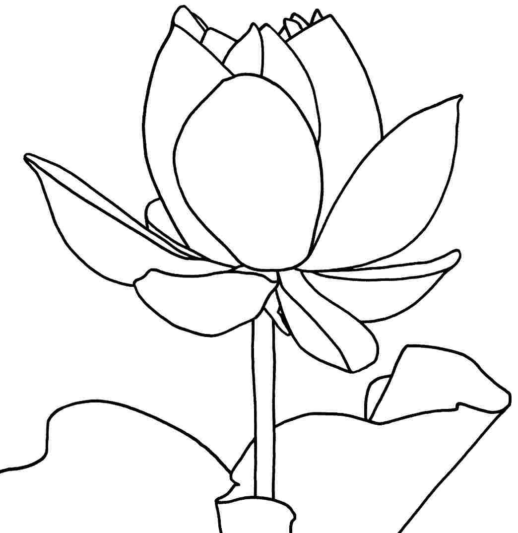 F Worksheet Printable Flowers