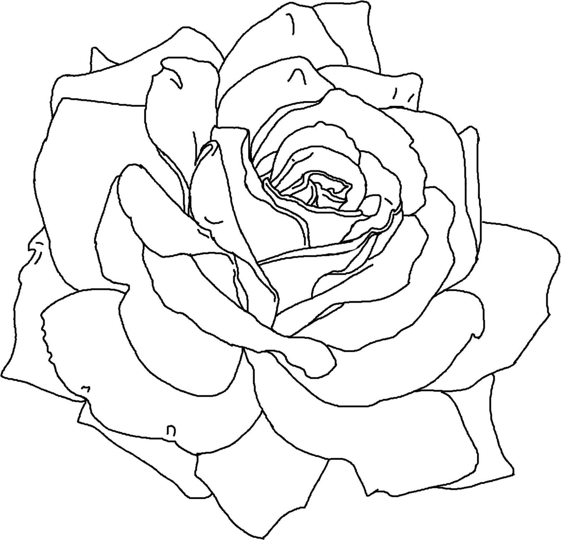 Free Printable Flower Coloring Pages For Kids - Best ... | printable colouring pages flowers