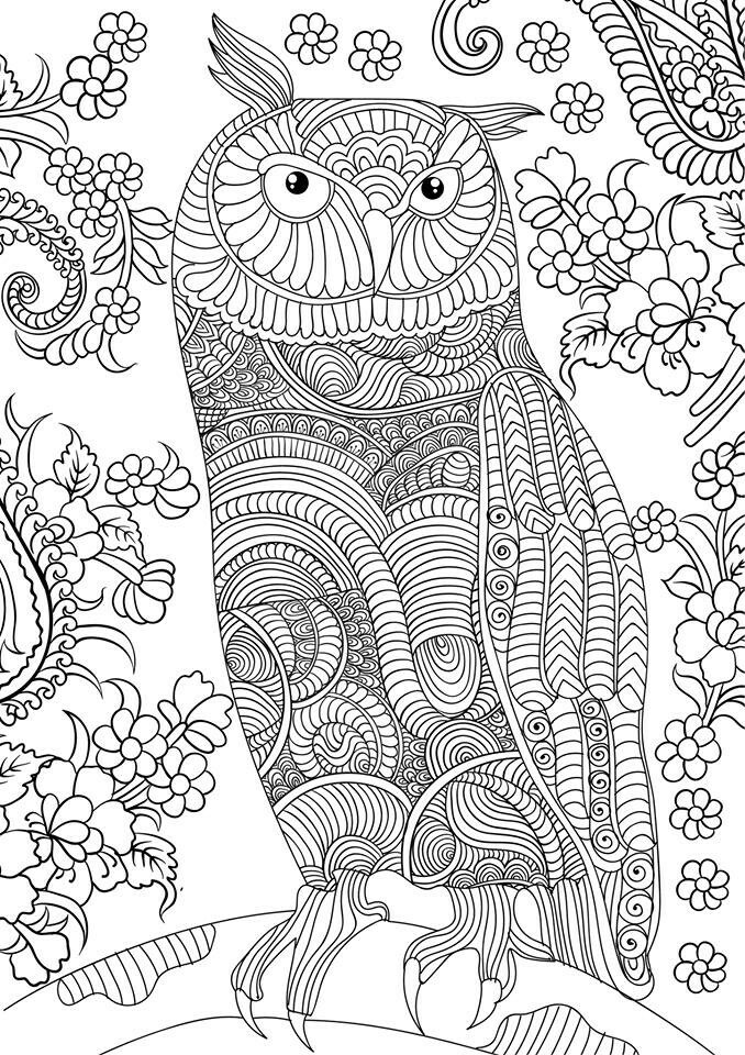 OWL Coloring Pages for Adults. Free Detailed Owl Coloring ... | free online coloring pages for adults animals