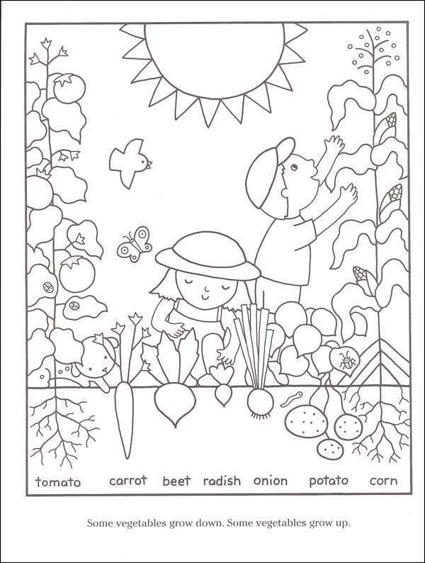 garden coloring page # 12