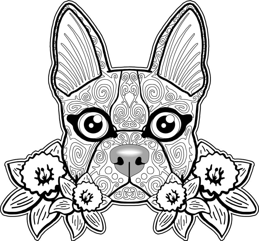 dog coloring pages for adults  best coloring pages for kids