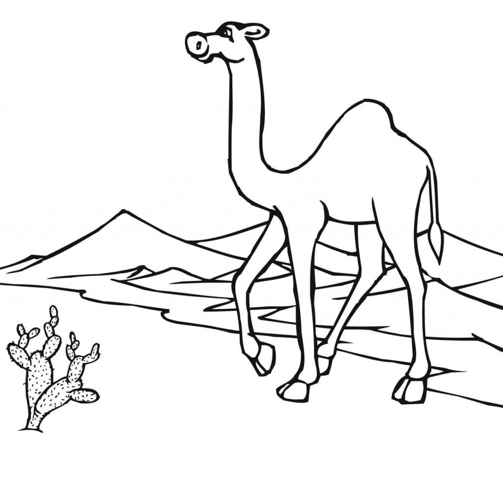 Desert Coloring Pages