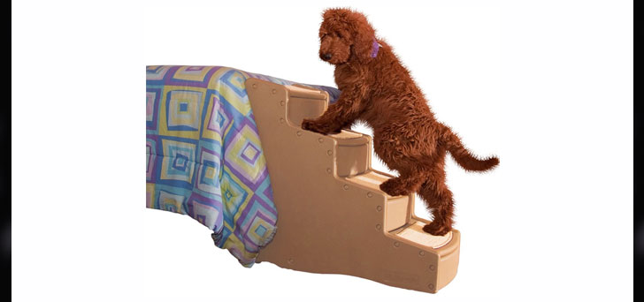Pet Gear Easy Step IV Pet Stairs, 4 Step For Cats And Dogs