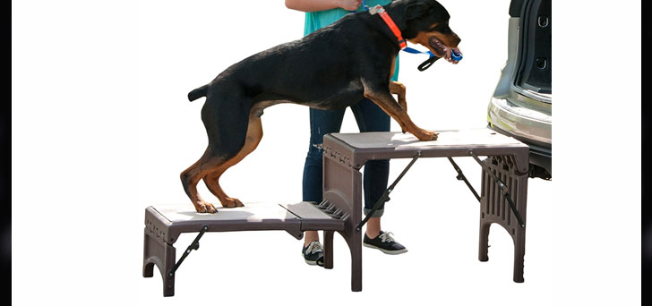 Pet Gear Free-Standing Ramp For Cats And Dogs Review