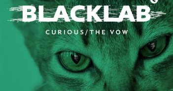 """Cover art for """"Curious/The Vow"""" by Blacklab"""