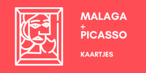 Malaga en Picasso Museum kaartjes