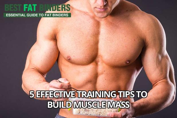 5 Effective Training Tips To Build Muscle Mass