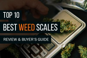 Best Weed Scales of 2019: A Review and Buyer's Guide 2