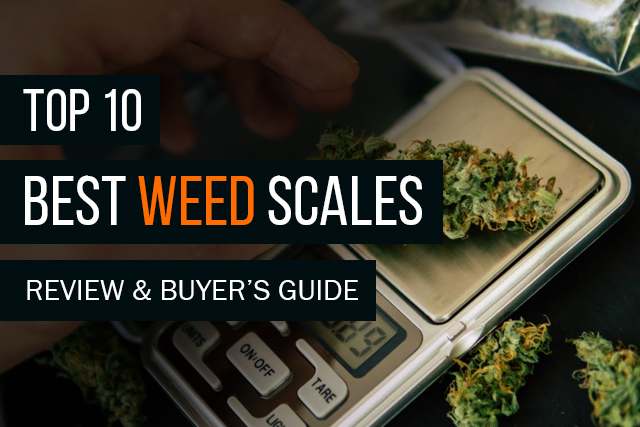 Best Weed Scales of 2019: A Review and Buyer's Guide