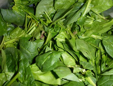 Fresh Spinach for Garlicky Spinach Dip