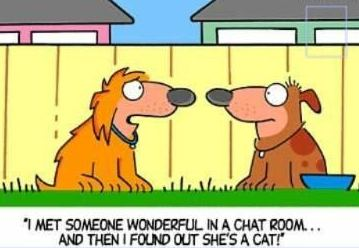 Image result for funny cartoons